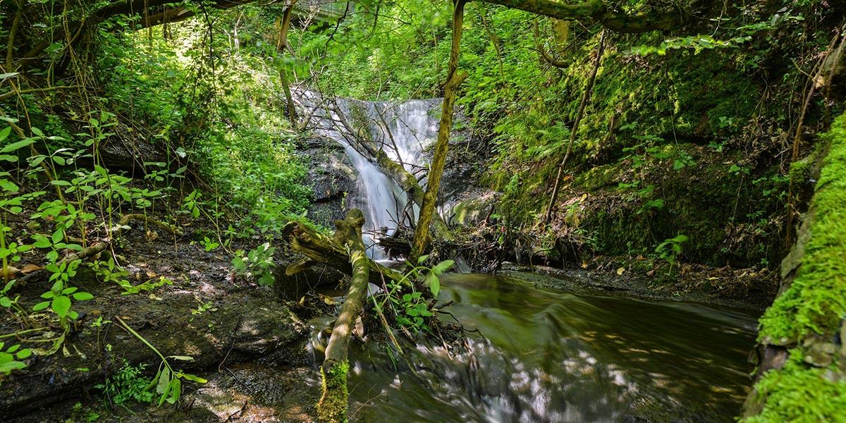 Laufbachwasserfälle